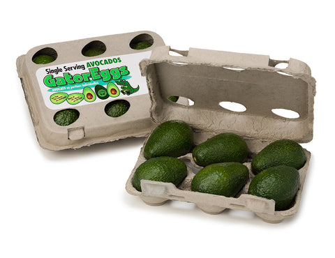 6 Pack Carton Gator Eggs Avocados
