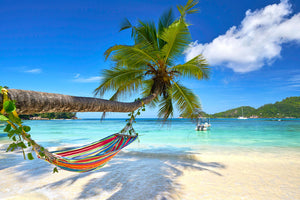 Blue Water Bliss: The Psychological Benefits of a Tropical Holiday