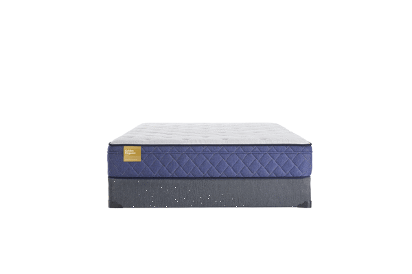 Sealy Brand Plush Euro Top Mattress King Size - Save on Mattresses Outlet