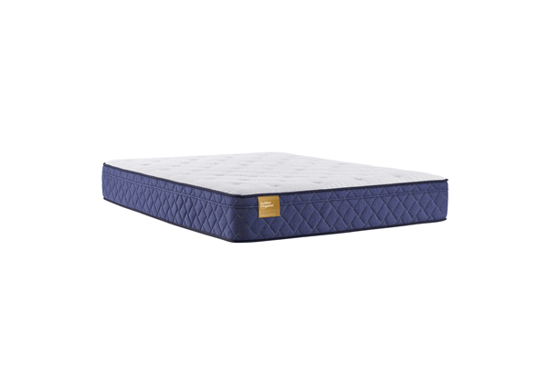 Sealy Brand  Plush Euro Top Mattress Queen Size - Save on Mattresses Outlet