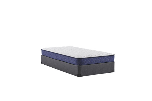 Sealy Brand Mattress Queen Size