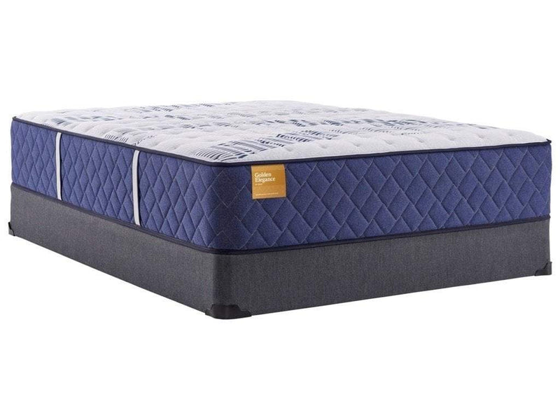 Sealy Firm 14.5 Queen Mattress - Save on Mattresses Outlet