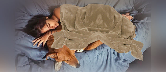 Why Women Sleep Better Next to Dogs