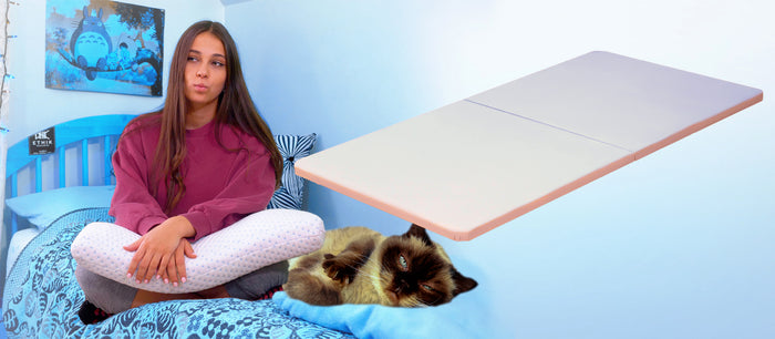 Will Your Cat Judge you for having a Bunkie Board?