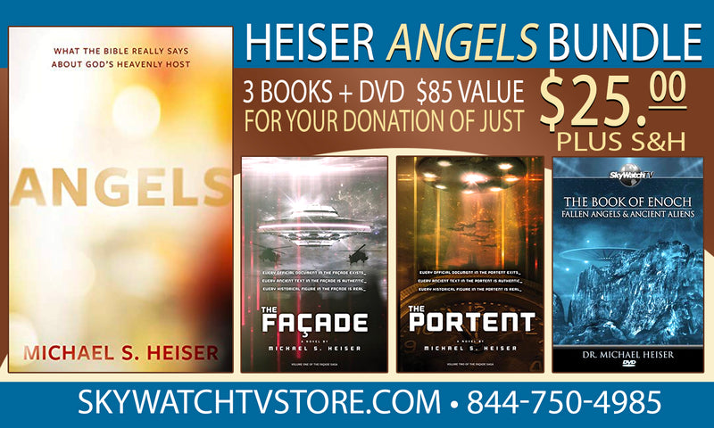"Michael Heiser's ""Angels"" Special Offer"