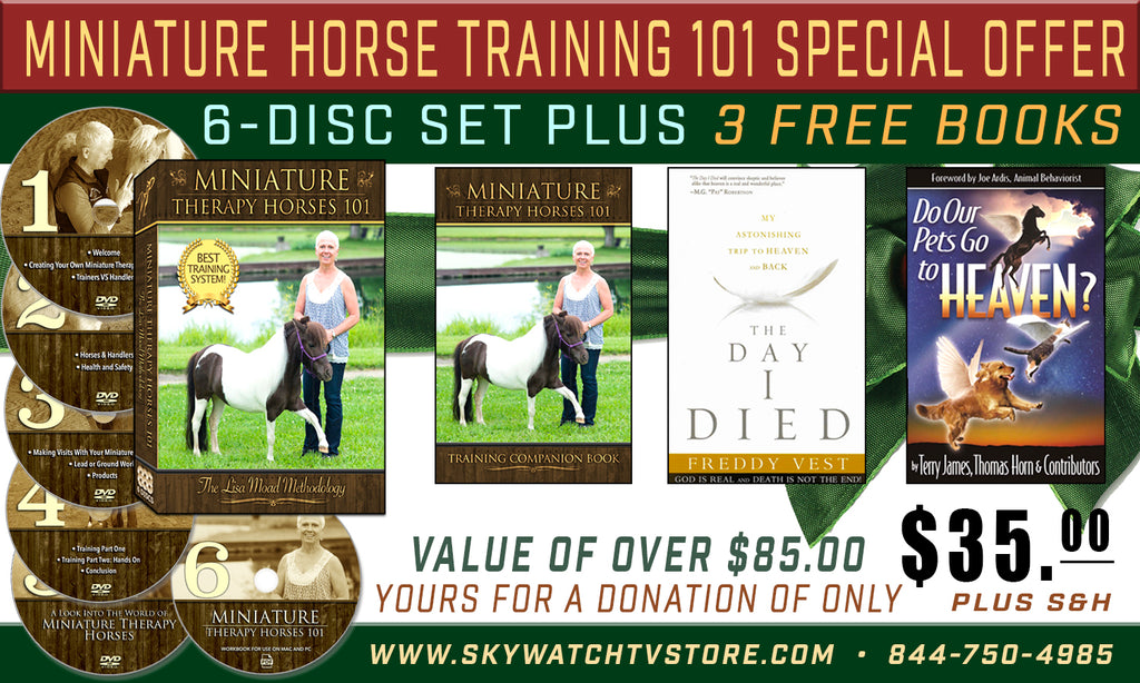 Miniature Horse Training 101 Special Offer