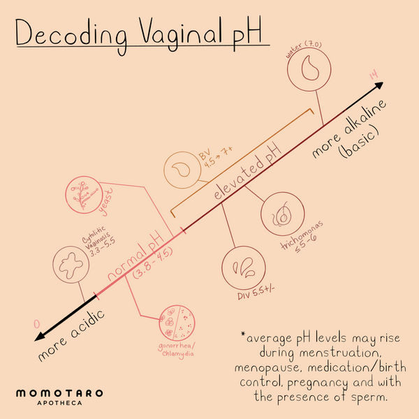 How to Decode Your Vaginal pH