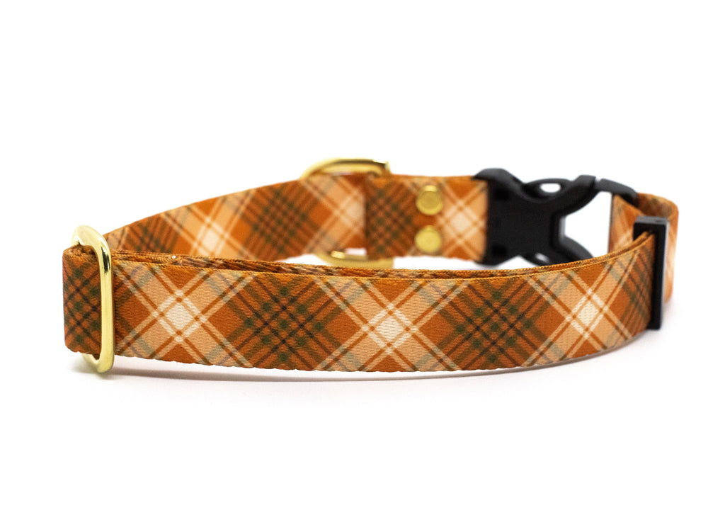 Elements Series - Pumpkin Spice Dog Collar