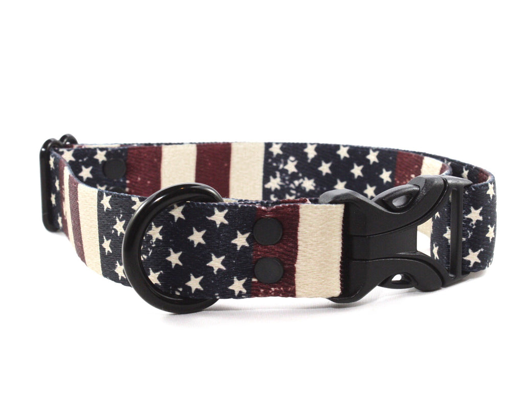 Stars and Stripes Fourth of July Dog Collar