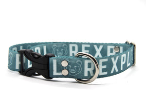 Explore Dog Collar