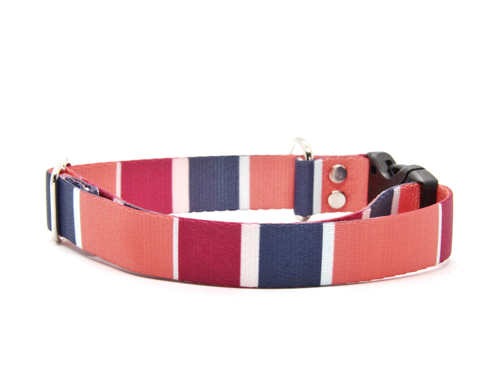Coral Color Block Dog Collar