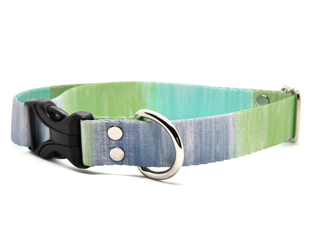 Blue Dog Collars