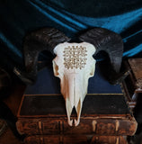 Ram Skull with sator square