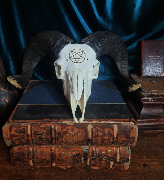 Ram Skull with inverted pentagram