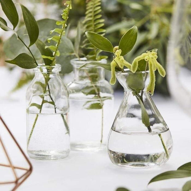 3 Botanical Mini Glass Vases - HoorayDays