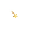 Tiny Star Charm Add On - Silver - Gold