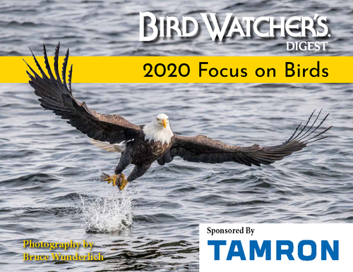 Get Bruce Wunderlich's Focus on Birds 2020 Calendar at Redstart Birding.