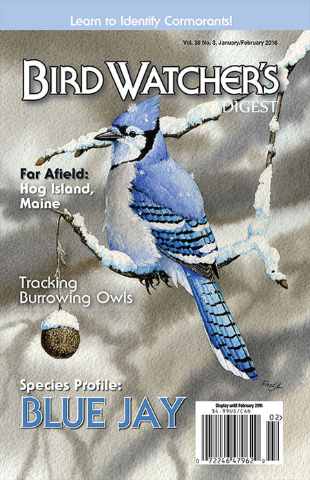 Bird Watcher's Digest 2008 Back Issues