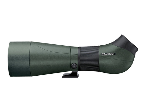 Shop the Swarovski ATS-80 HD Angled Spotting Scope Body for bird watching at Redstart Birding.
