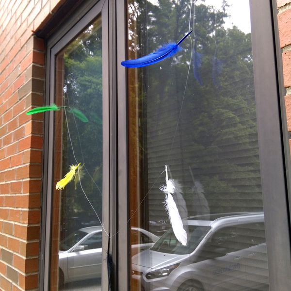 Prevent birds from flying into your windows with the FeatherGuard! Put them up during migration, keep them up all year.