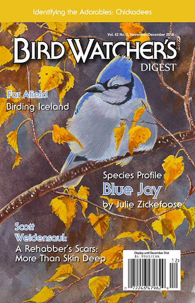 Bird Watcher's Digest Magazine Subscription