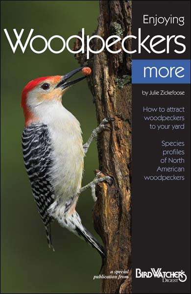 Enjoying Woodpeckers More teaches you about woodpecker species, shows you what to feed woodpeckers, and offers great insight on what bird houses woodpeckers prefer.