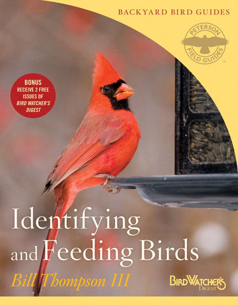 Identifying and Feeding Birds