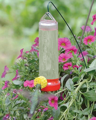 Shop the Li'l Beginner Hummingbird Feeder at Redstart Birding.
