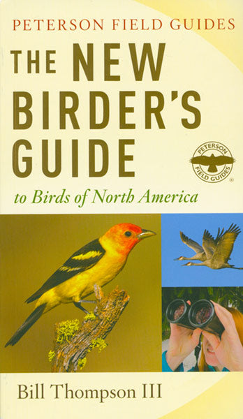 Creating Your Backyard Bird Garden