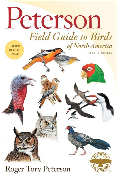 Birding Basics and Beyond