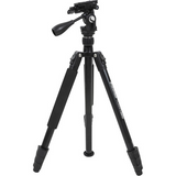Shop the Celestron Hummingbird Compact Tripod with Pan/Tilt Head at Redstart Birding.