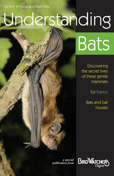 Digital Download: Understanding Bats