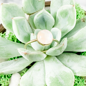 14K Gold 8mm Rainbow Moonstone Ring
