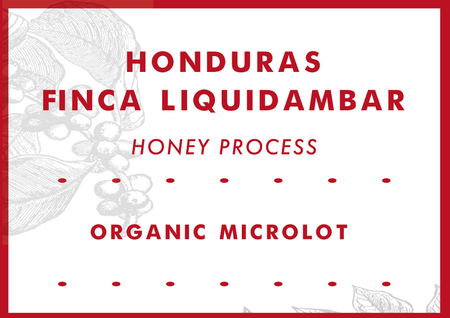 Honduras Finca Liquidambar Honey Process