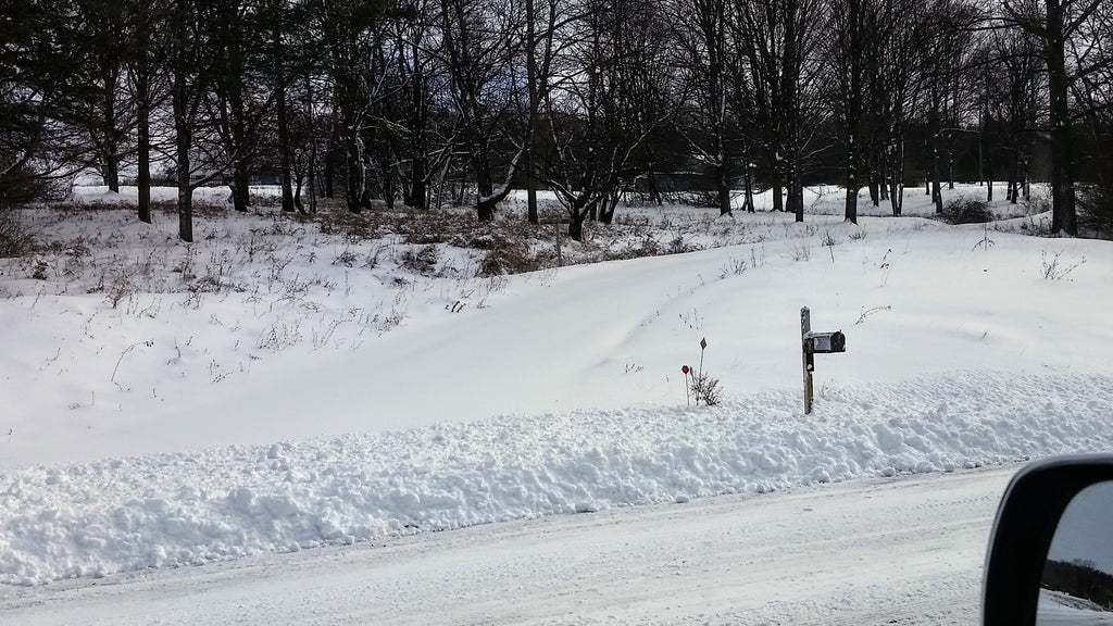 Steep driveway snowed in in the Finger Lakes