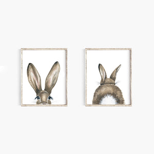 Bunny Tail - Emma Allen Single Art Print
