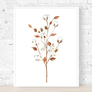 'Cotton Flower' Watercolour Art Print