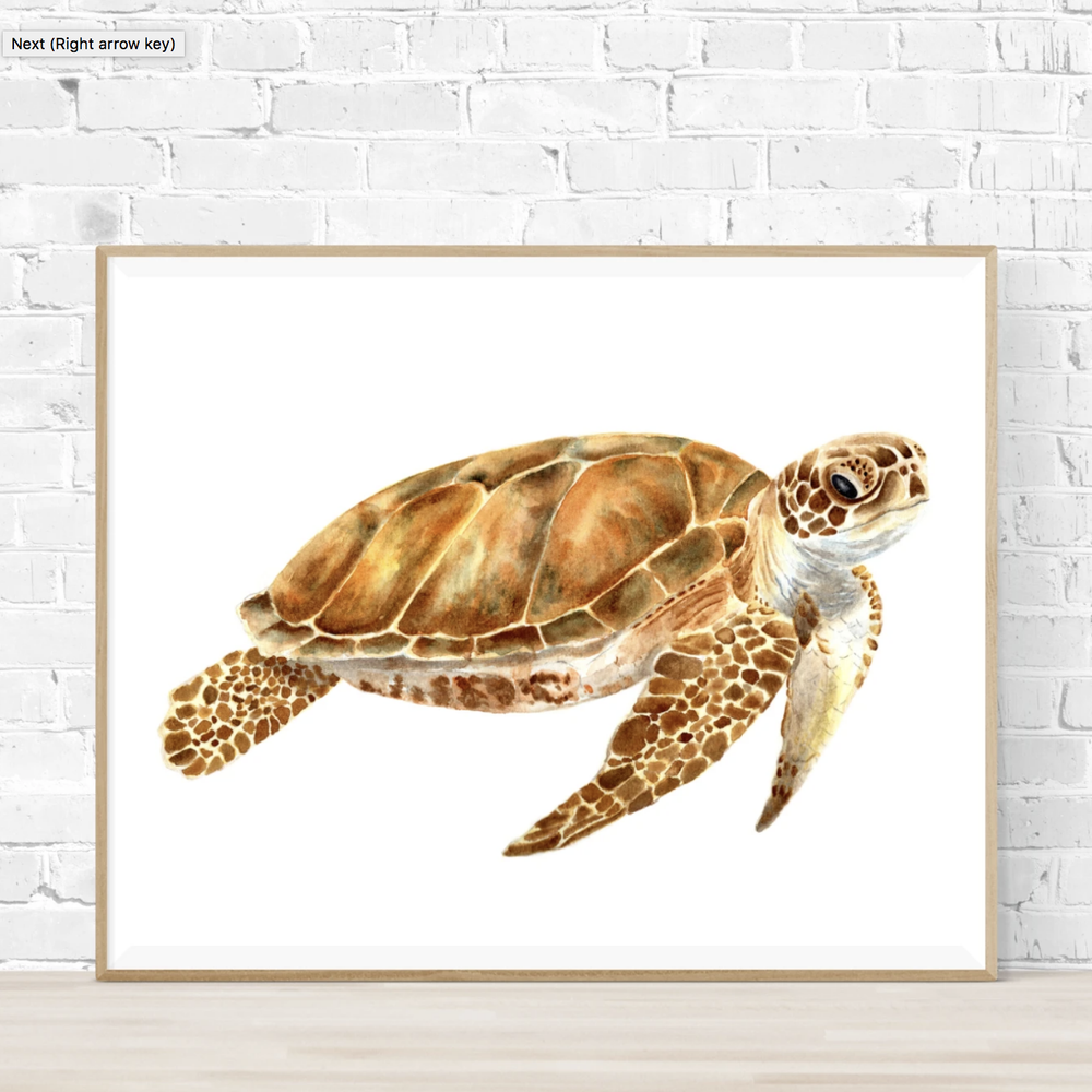 'Leo the Sea Turtle' Watercolour Art Print