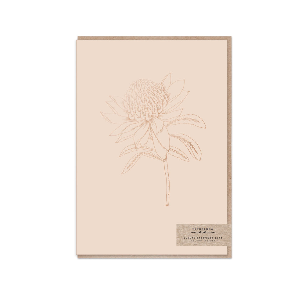 Blank 'Nude Waratah' Greeting Card