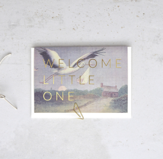 'Welcome Little One' Stork Greeting Card