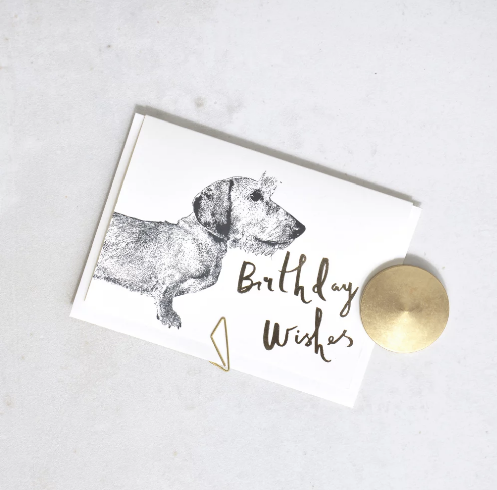 'Birthday Wishes' Bertie Dog Greeting Card