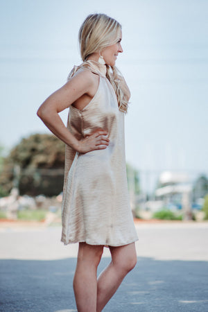 FLASH SALE / Champagne Fields Back Bow Dress