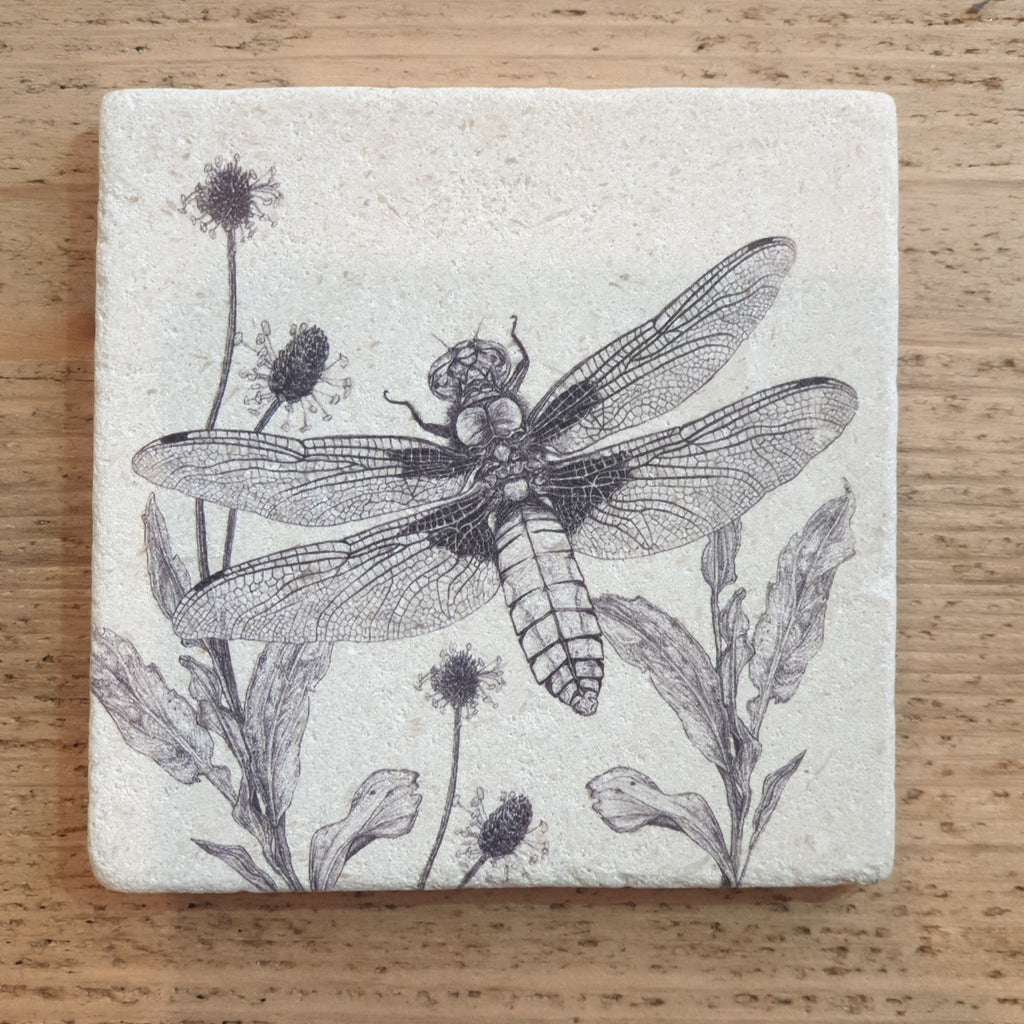 Limited Edition Natural Stone Coaster- Broad-bodied Chaser Dragonfly