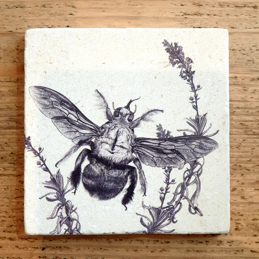 Limited Edition Natural Stone Coaster- Carpenter Bee