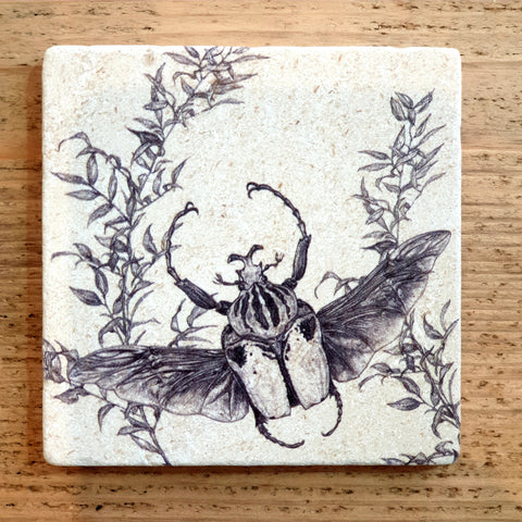 Limited Edition Natural Stone Coaster- Goliath Beetle