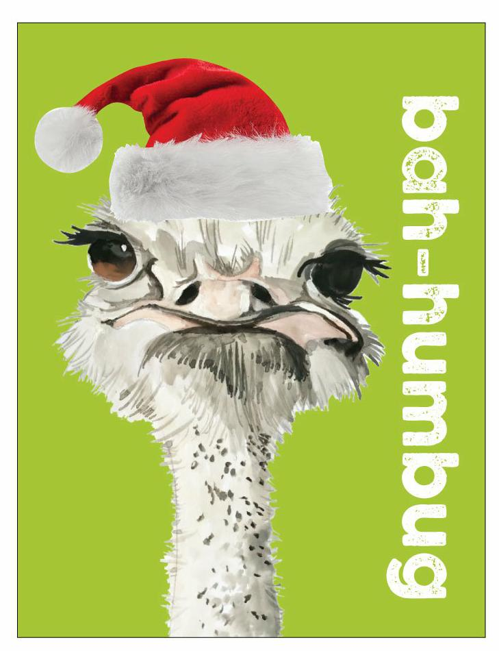 Bah-humbug - 5 pack of Christmas cards