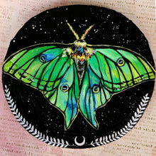 Load image into Gallery viewer, Spanish Moon Moth