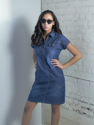 The Cynthia Denim Dress