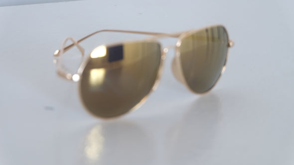 The Barker Aviator Sunglasses
