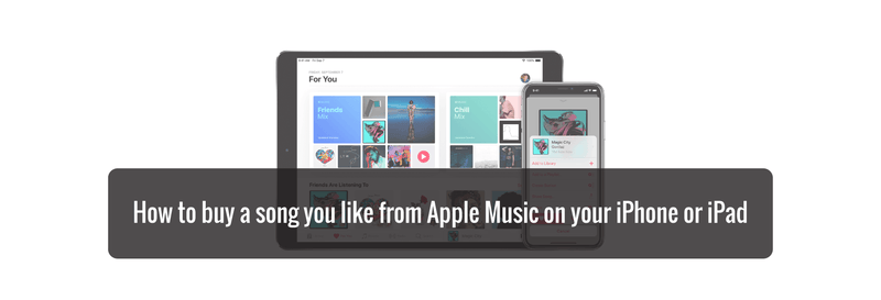How to buy a song you like from Apple Music on your iPhone or iPad